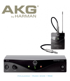 AKG WMS45 Instrument Set